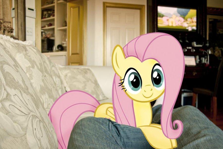 fluttershy__s_on_my_couch_by_ilovemyipod098-d4jovsf.jpg